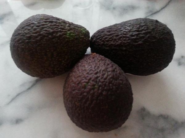 guacamole, recipe, avocado, home-made