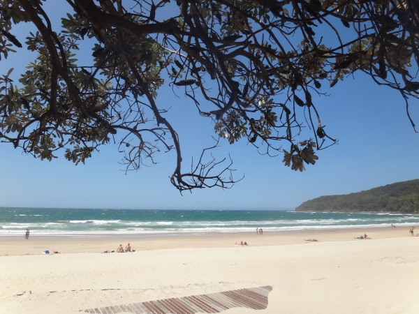 Sails, Noosa Heads, restaurant, review