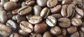 Highlights of an espressocourse