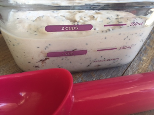 Home-made sugar free ice cream (no machine needed)