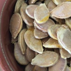 Crispy pumpkin seeds – dehydrated or roasted